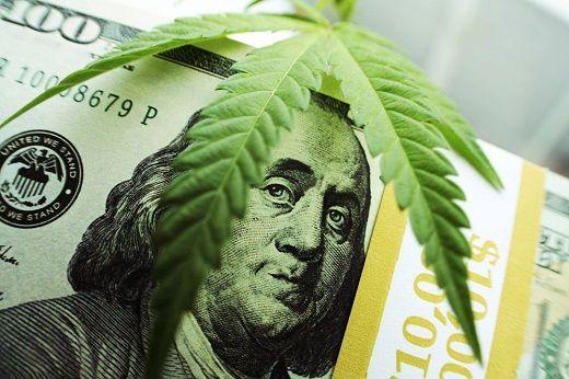 рынок каннабиса медицинская марихуана